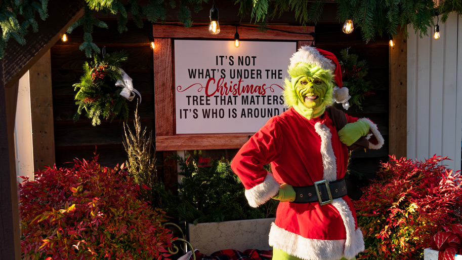 Share My Story down to earth nursery grinch