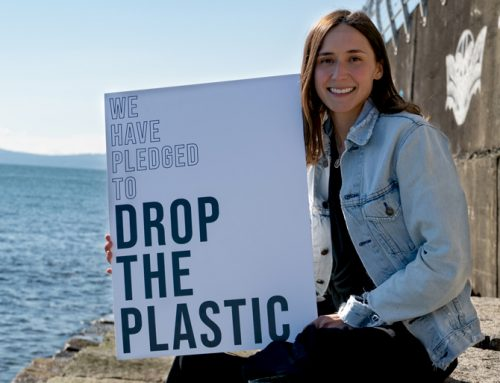 Drop the Plastic's Story